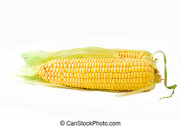 Sweetcorn over a white background with leaves still attached...