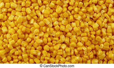 Sweetcorn Pile Rotating - Overhead shot of sweetcorn turning...