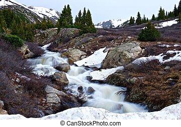 Swift Mountain Creek Running through Alpine Meadows.