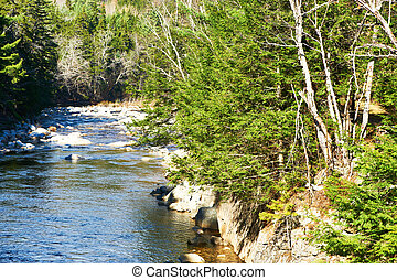 Swift River in White Mountain National Forest, New...