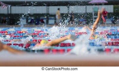Swim Practice In The Pool
