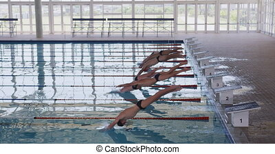 Swimmers diving into the pool - Side view of multi-ethnic ...