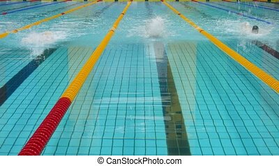 Swimmers take part in competitions in pool, time lapse