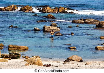 Swimming bath in Isla Negra, Chile.