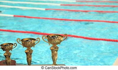 Swimming competitive for cup