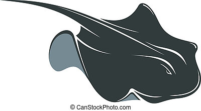 Swimming manta ray with a long tail and wing-like pectoral...