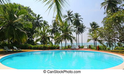 swimming pool and palms on tropical resort