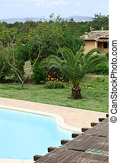 Swimming pool and tropical garden
