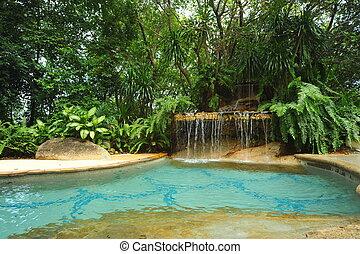 swimming pool at a tropical resort.