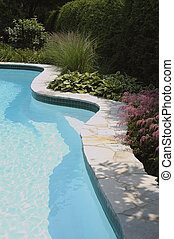 Curved line of a beautifully landscaped pool