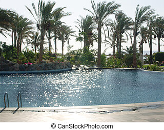 Swimming pool in Marsa-alam - swipping pool in marsa-alam, ...