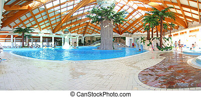 Swimming pool - indoor pool