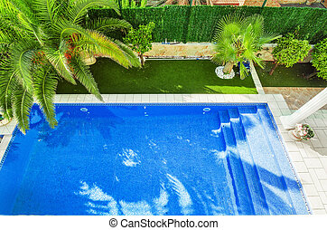 Swimming pool view from above. Clear water, with a beautiful palm tree.