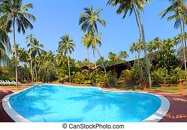 swimming pool with palm trees at tropical resort