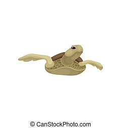 Swimming sea turtle reptile animal vector Illustration on a white background