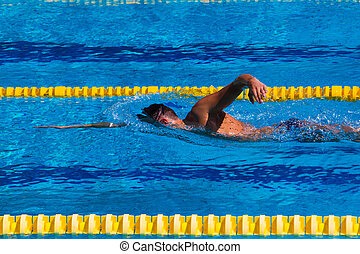 Swimming - Stock Image - Professional swimmer in the pool -...