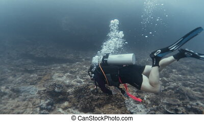 Swimming under the vast sea - A tracking shot of a scuba...