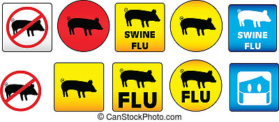 Swine Flu Signs