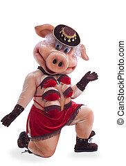 Swine mascot costume dance striptease in hat - Pig mascot...