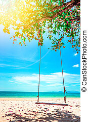 Swing hang from coconut tree over beach