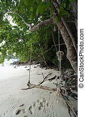 Swing hanging under the tree and footprints on a beach of tropical island