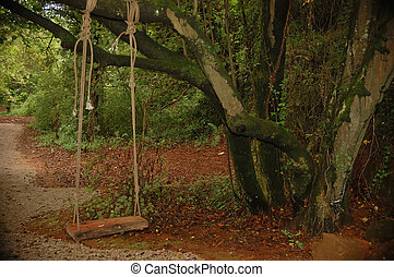 swing made ??of rope and a board hanging from a tree