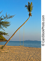 Swings on palm on tropical beach