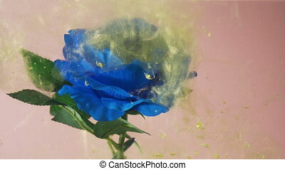 Swirling golden dust floats around blooming blue rose. Close view of golden particles floating underwater