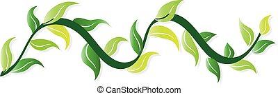 Swirly leaves logo