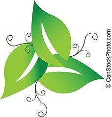 swirly, logotipo, verde, folheia