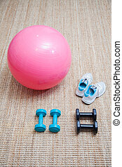 Swiss ball fitness sport
