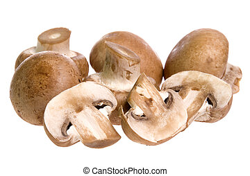 Isolated image of Swiss brown mushrooms.