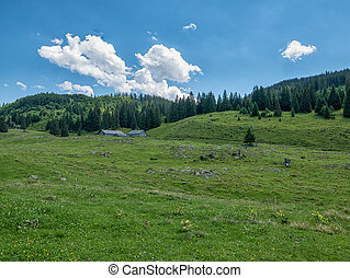 Swiss landscape - mountains and forest in Switzerland - A...