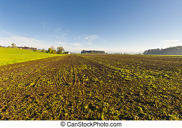 Swiss village surrounded by plowed fields.