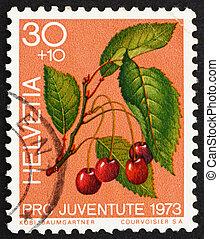 SWITZERLAND - CIRCA 1973: a stamp printed in the Switzerland shows Sweet Cherries, Prunus Avium, Bird Cherry, circa 1973