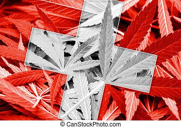 Switzerland Flag on cannabis background. Drug policy....