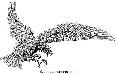 Swooping eagle - Original eagle illustration of an eagle...