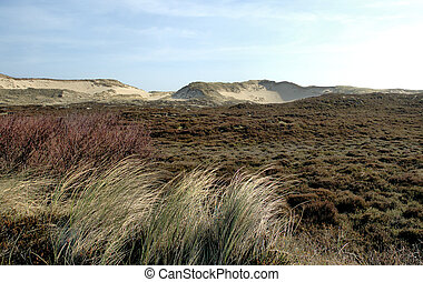 Sylt Dunescape 4 - Gorgeous dunescape on the german island ...