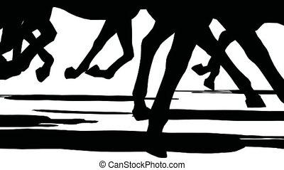 sylwetka, do góry, stado, feet, wyścigi, czarne tło,...