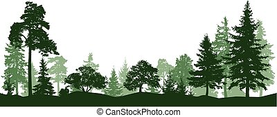 sylwetka, drzewa., odizolowany, park, las, wektor, alley., krajobraz