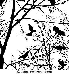 sylwetka, gołąb, drzewa