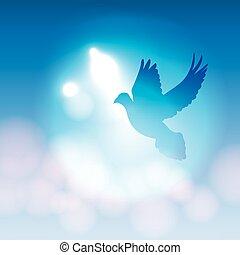 sylwetka, gołębica, ilustrowany, światła, bokeh, miękki