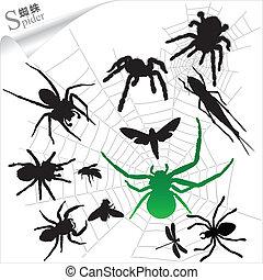 sylwetka, insekty, pająki, -