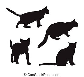 sylwetka, koty, czarnoskóry