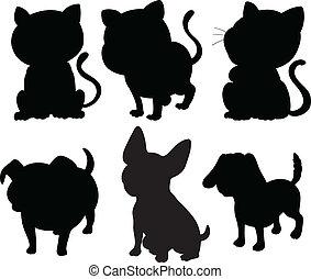 sylwetka, koty, psy