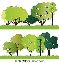 sylwetka, las, drzewa