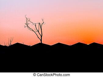 sylwetka, niebo, dach, domy, zachód słońca, pomarańcza