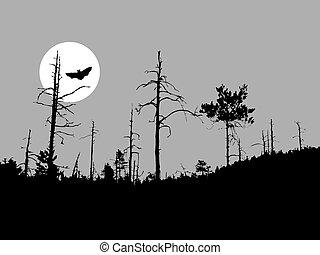 sylwetka, nietoperz, na, księżyc, tło