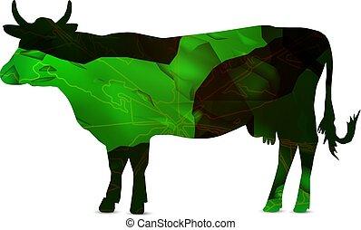 sylwetka, od, krowa