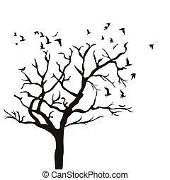 sylwetka, od, niejaki, drzewo, bez, liście, i, lecące ptaszki